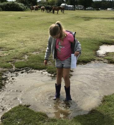 Muddy puddles on a rainy day